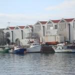 pescadores barco