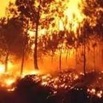 Santa Casa destina entre a 4 a 6 ME em receitas de jogos antes do Natal a vítimas dos incêndios