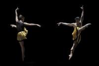 ensaio do ballet Programa Reportório.